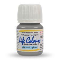 Life Colours RAL 9007 Graualuminium glänzend 15 ml